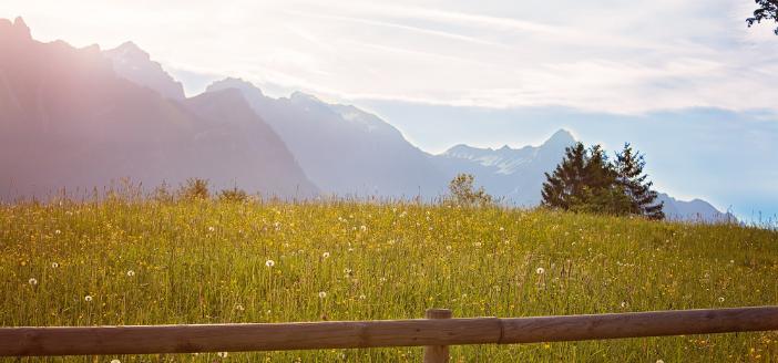 Sehnsuchtsbild Reise und Urlaub in Österreich